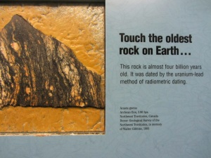 Exhibit at the Denver Museum of Nature & Science.