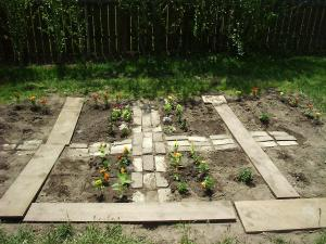 """The beginnings of our garden one year when we tried """"square foot gardening"""""""