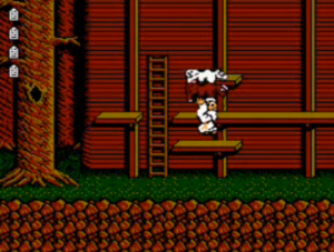 "The gameplay and presentation in ""Noah's Ark"" are similar to that of the American Super Mario Bros. 2."