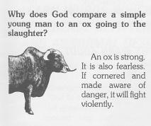 C ox slaughter