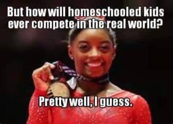 Image result for homeschool meme